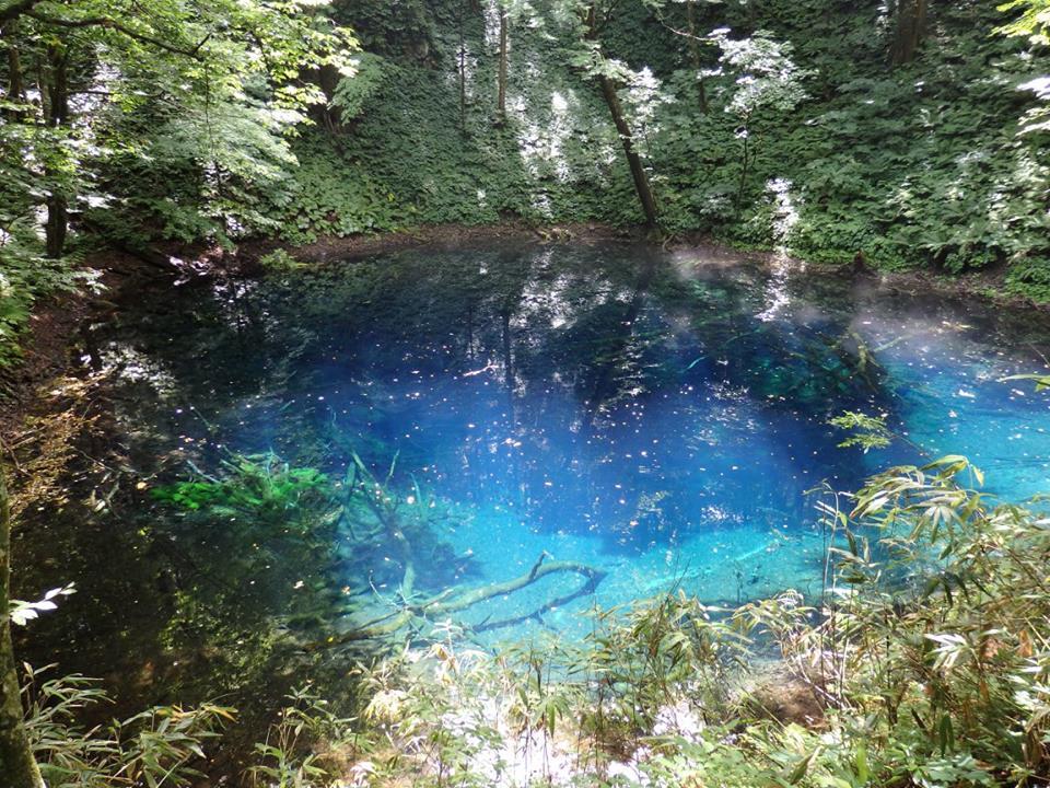青森県の白神山地の青池