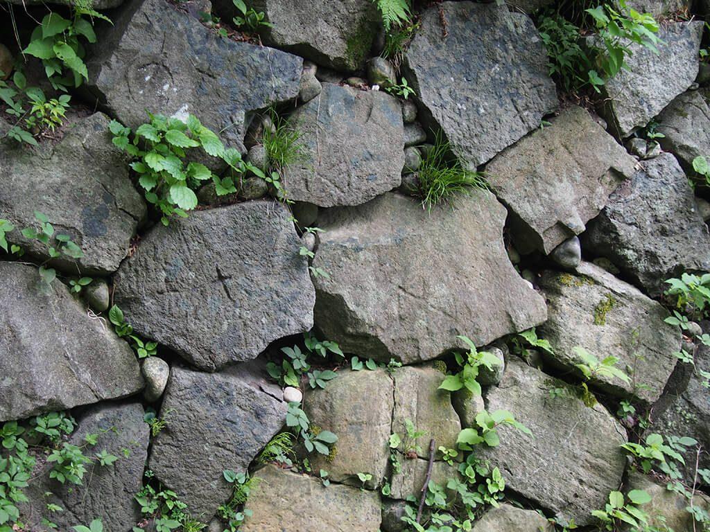 高岡城跡の石垣