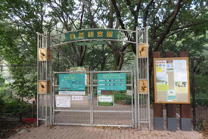 自然観察園