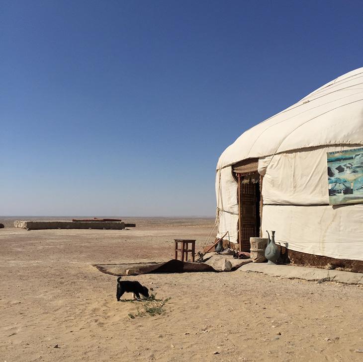 砂漠のユルタでランチ